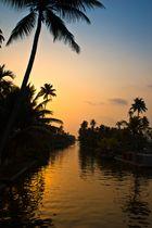 Backwaters Kerala India I