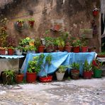 Backyard in Lisboa