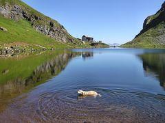 Bad im Bergsee