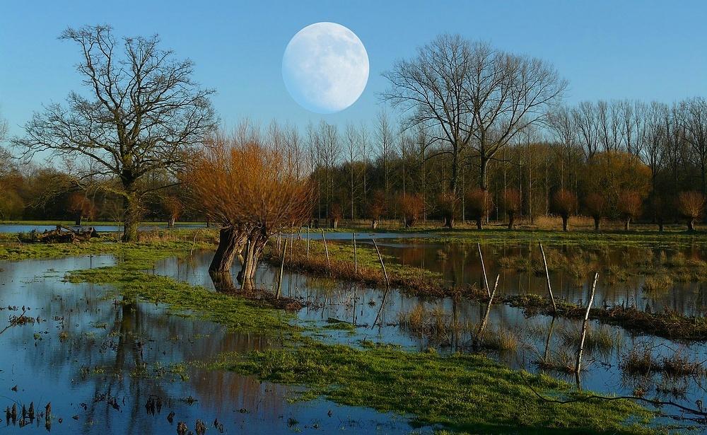 Bad moon rising (°)