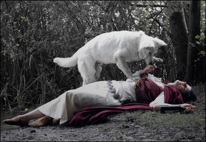 +bad wolf