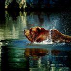 baden kann so schön sein ...