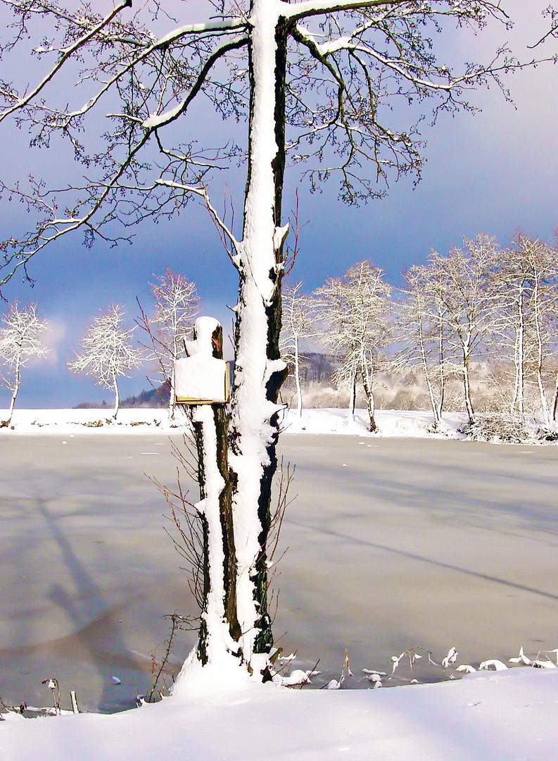 Baden-verboten-001-Herkules-Winter