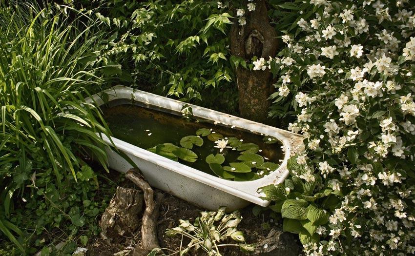 Badewanne in nachbars garten foto bild landschaft for Gartengestaltung zinkwanne