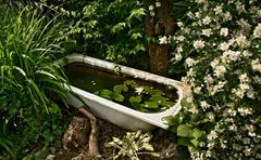 Badewanne in Nachbars Garten