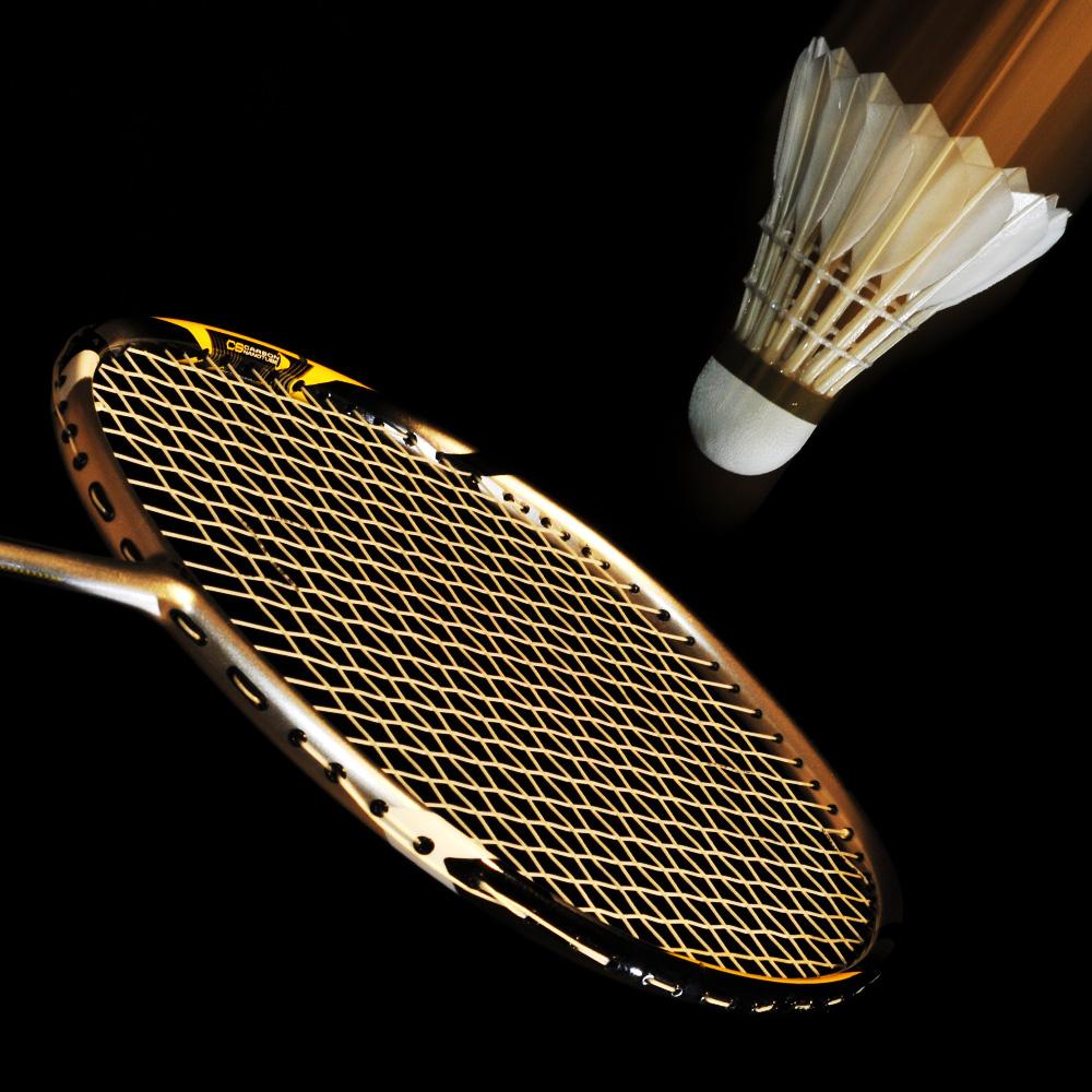 Badminton - Den Moment eingefangen -