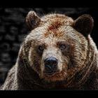 Bär!!