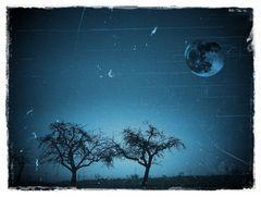 Bäume in blau mit Mond