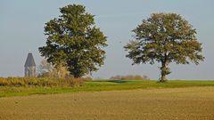 Bäume in der Feldflur des südlichen Münsterlandes