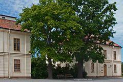 Bäume und Unterkünfte der Bediensteten Schloss Drottningholm