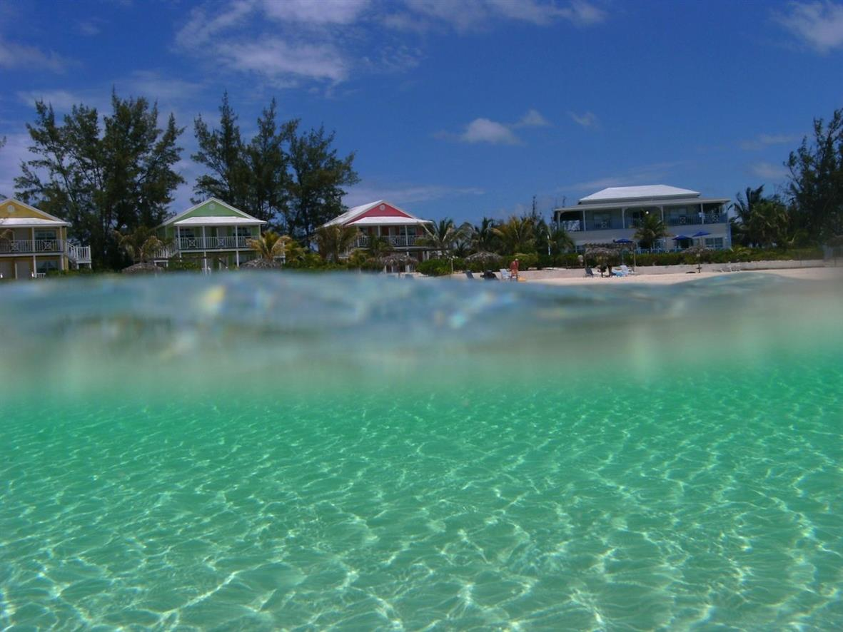 Bahamas coco di mama