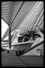 Bahnhof Liège-Guillemins 3