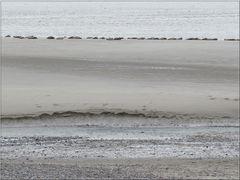..Baie de Somme, au Hourdel à marée basse..