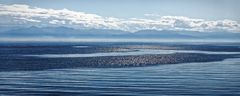 Baikal I