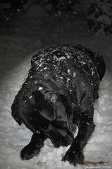 Baira´s Schneebad