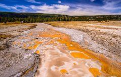 Bakterienmatte, Yellowstone NP, Wyoming, USA