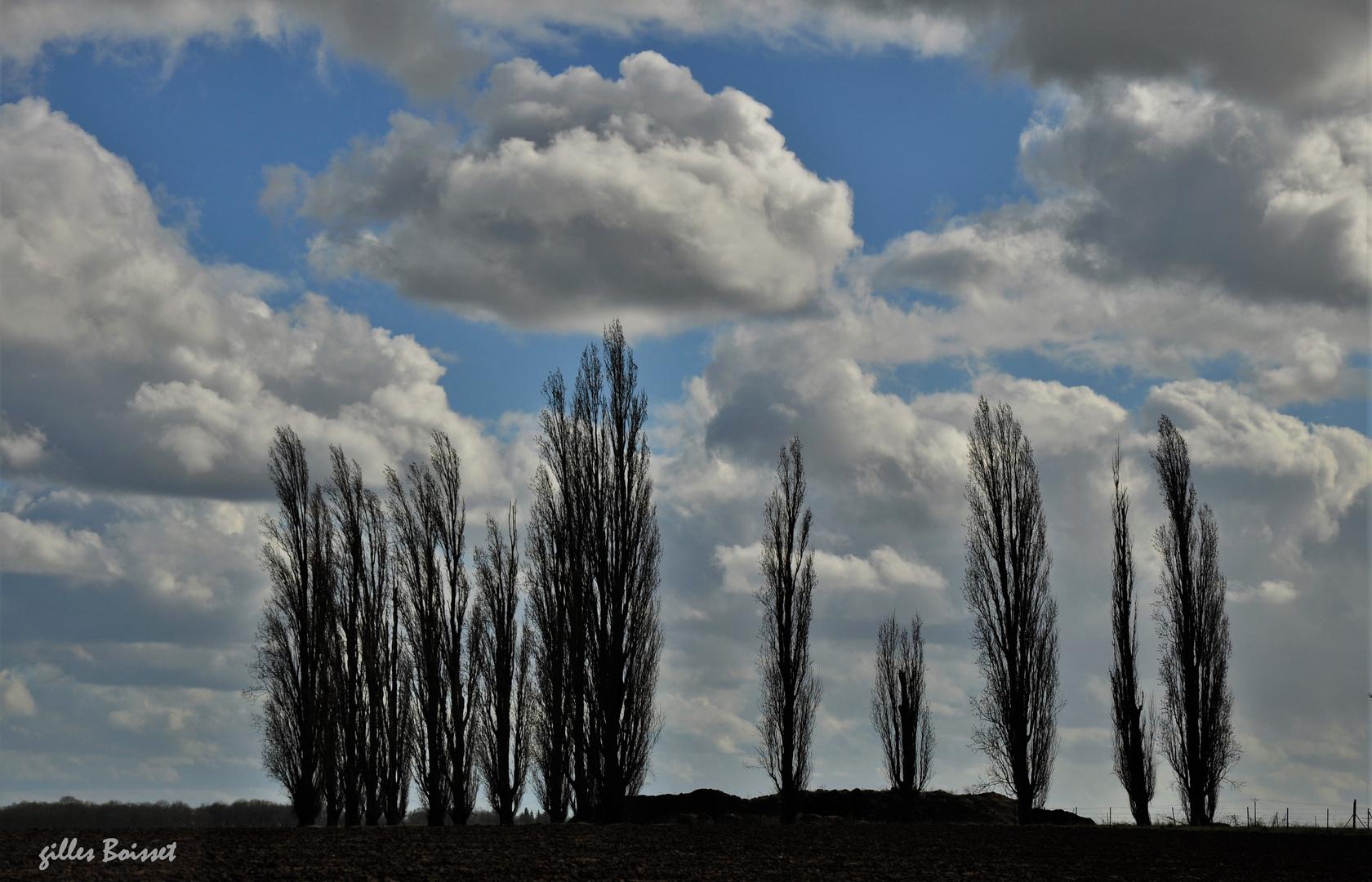 Balais à nuages