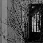 Balcones y ventanas. XLVIII.