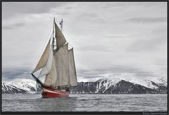 Svalbard 2006