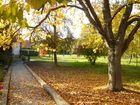 Bald braun die Blätter fallen von den Bäumen allen