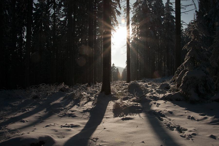 Bald ist der Winter vorbei