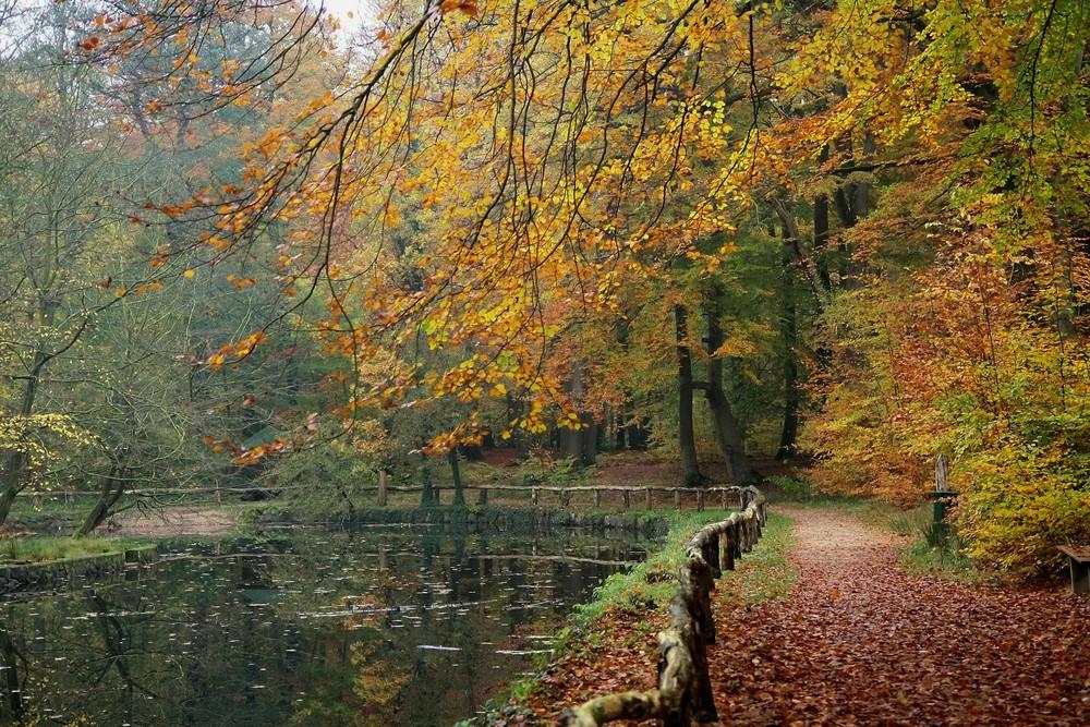 Bald ist wieder Herbst ggg*
