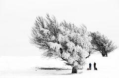 ...Bald ist wieder Winter...