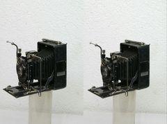 Balgenkamera 3D (Kreuzblick)