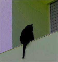 Balkoneando