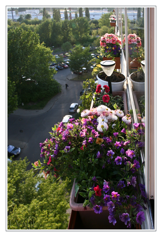 Balkonien 1