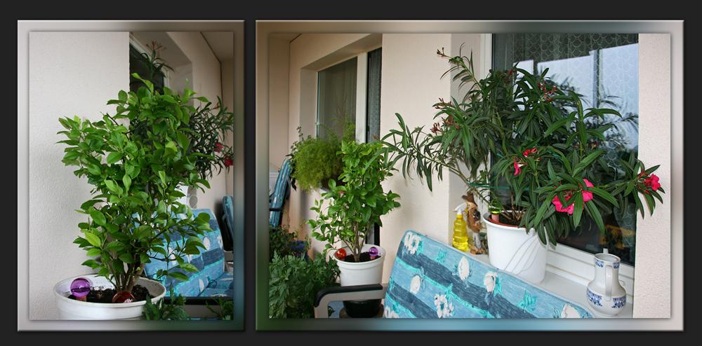 Balkonien im Mai