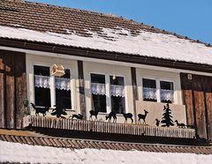 Balkonschmuck im Winter .....