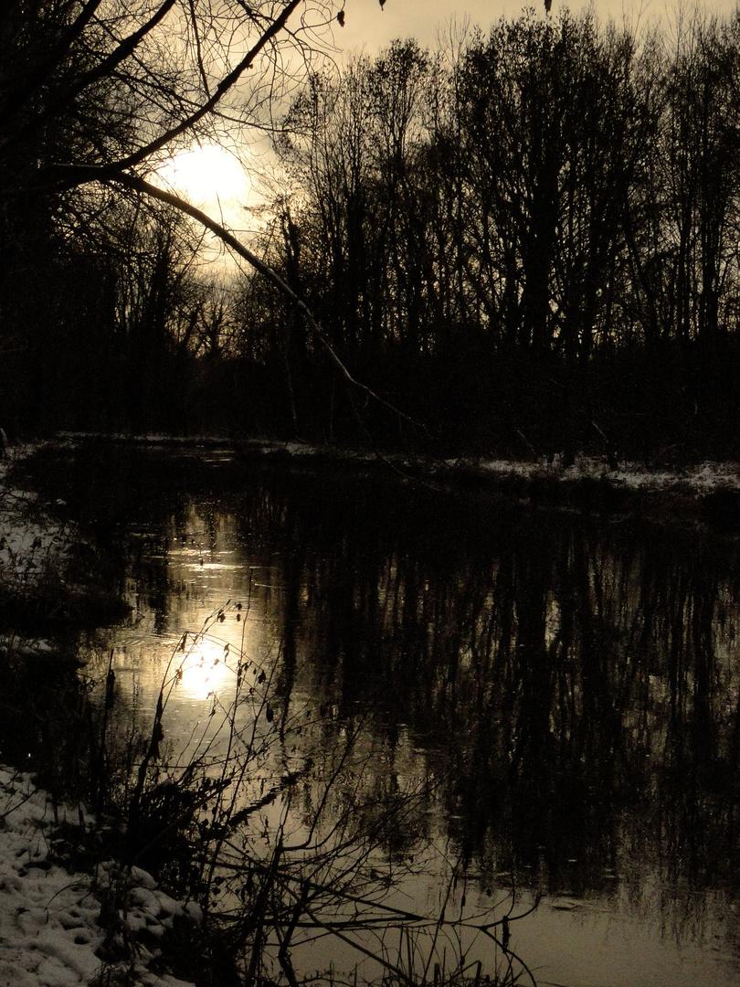 Ballade hivernale au bord de l'Essonnes