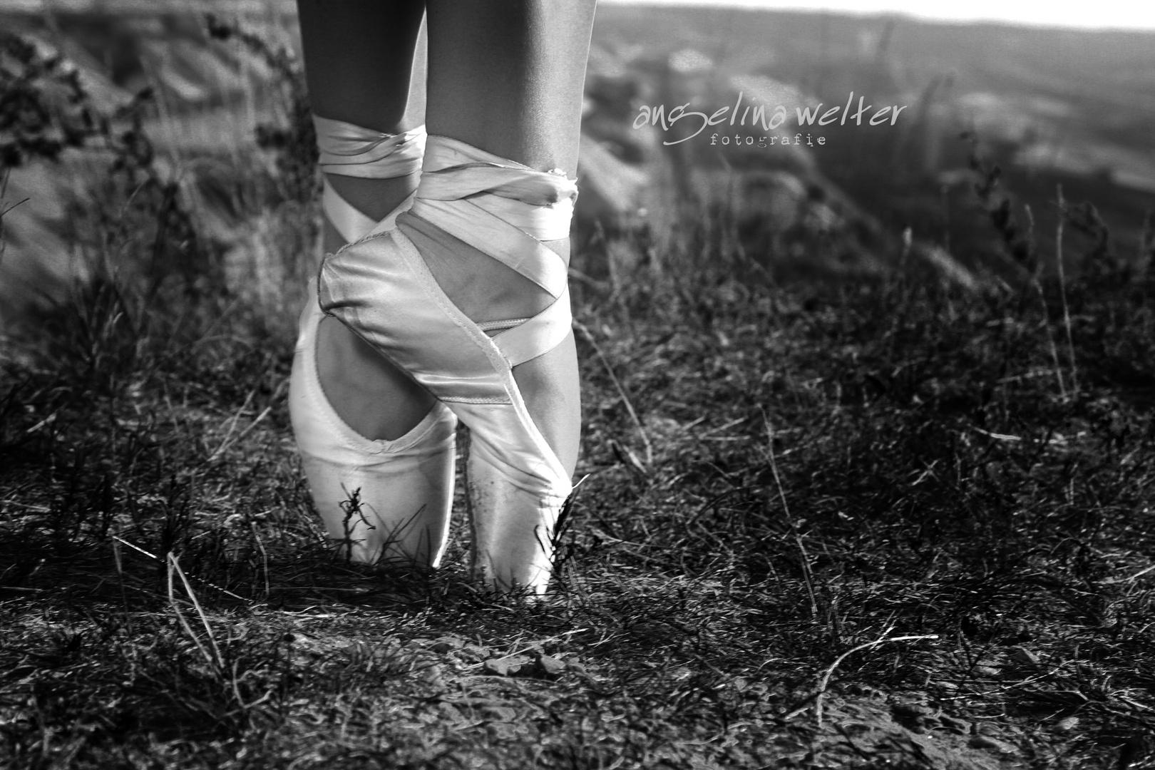 ballerinas mystery -002