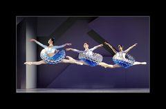 - Ballett Coppelia -