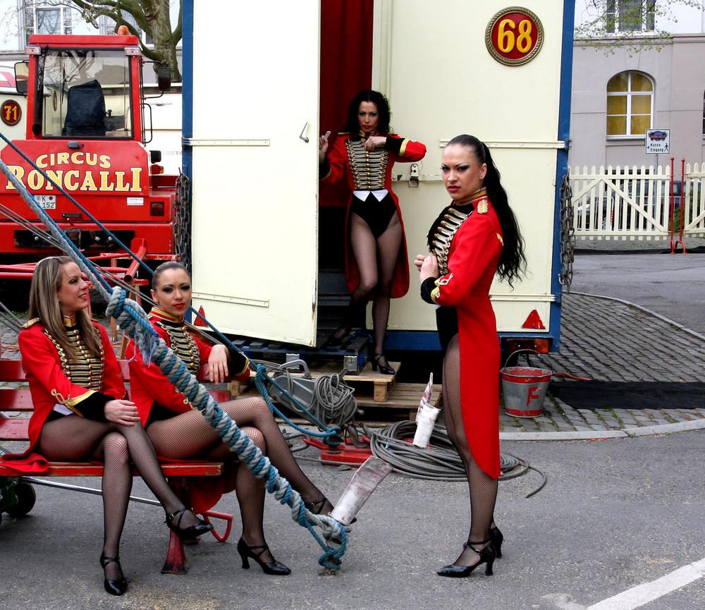 ballett damen des circus roncalli foto bild. Black Bedroom Furniture Sets. Home Design Ideas