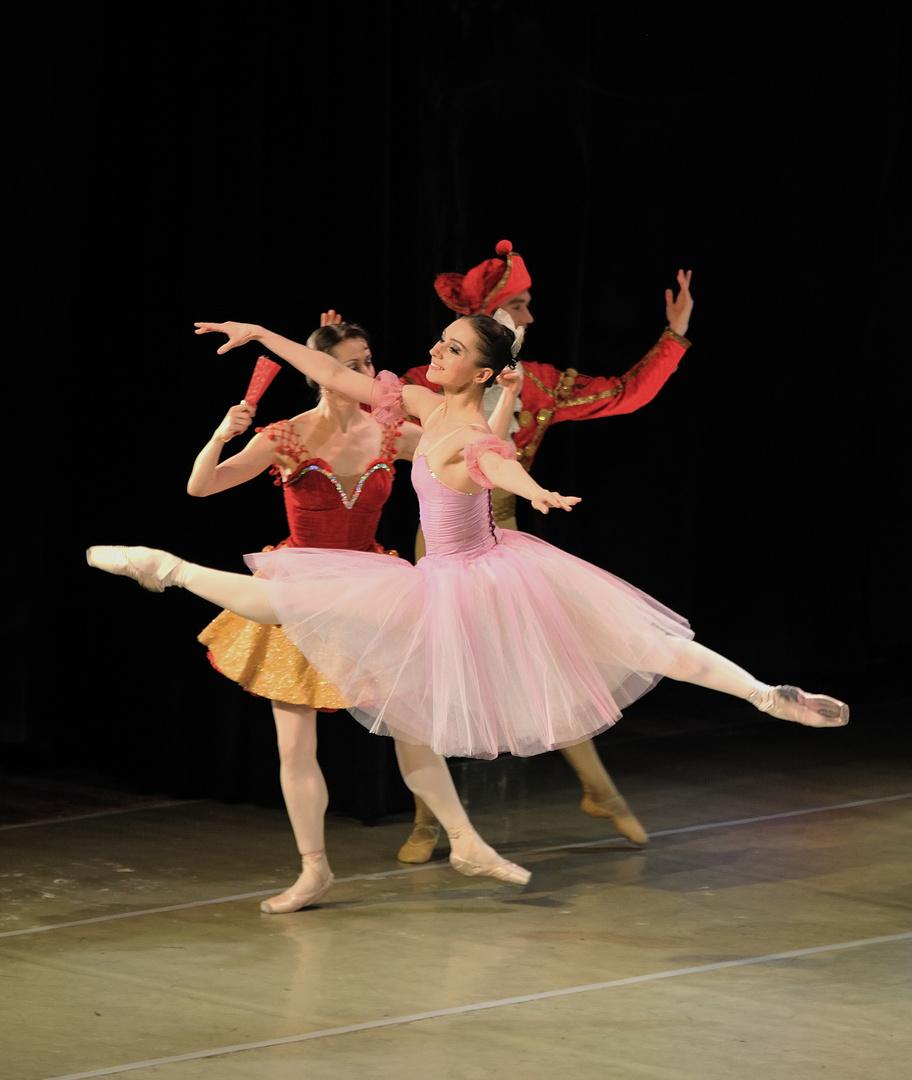 Ballett in Perfektion