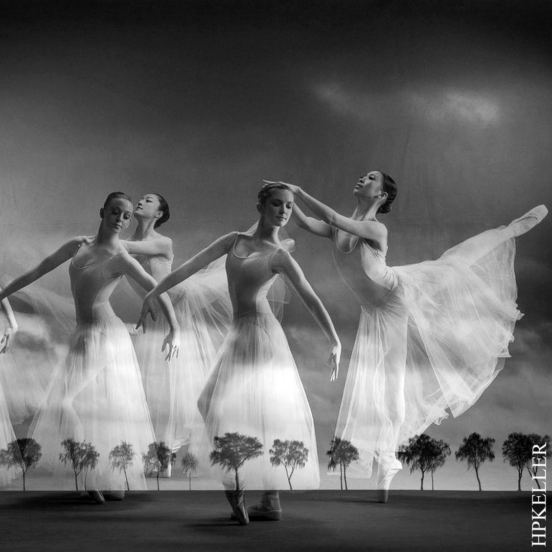 BallettArt XIII - Kombigrafie