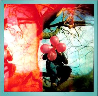 Ballons im Baum