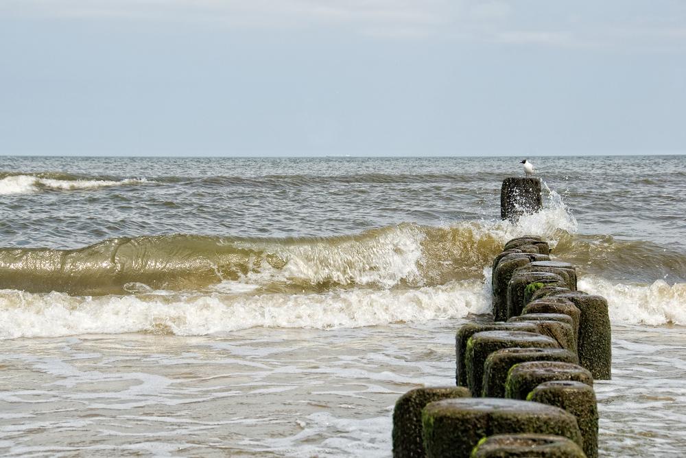 baltic sea V