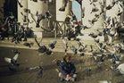 Bambino e colombi a San Pietro