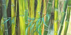 Bambus 50 x 100 cm