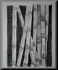 Bambus...