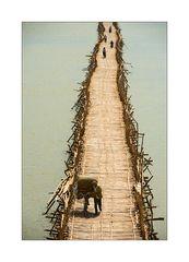 Bambusbrücke