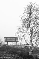 Bank in Nebel