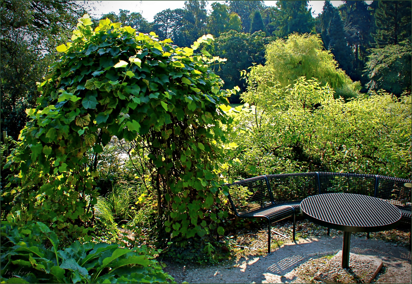 Bank Leere Foto Bild Natur Münster Botanischer Garten Bilder