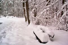 Bank mit Schnee