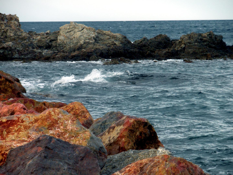 *Banyuls Sur Mer*