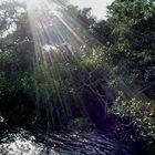 Baño de Luz - Estero de Jaltepeque El Salvador.