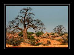 Baobab Village